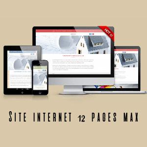 site 12 max